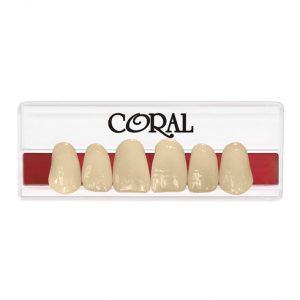 plaqueta anterior superior coral